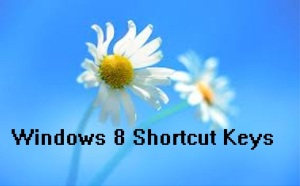 Microsoft has launched windows 8 with many new features.From than million of people has been purchased and start using windows 8 and many of them are fighting for the Windows 8 Start Menu.Windows 8 came with many changes and improvements as compared to previous windows version of windows OS.So windows 8 have larger number of keyboard shortcuts.Now in this article I am going share the Keyword and Shortcuts for the Windows 8.With this you can able to use Windows 8 very easily. Lets see the shortcuts of Windows 8.    Windows 8 Keyboard shortcut list:-   Windows key: Switch between Modern Desktop Start screen and the last accessed application Windows key + C: Access the charms bar Windows key + Tab: Access the Modern Desktop Taskbar Windows key + I: To the Settings charm Windows key + H: To the Share charm Windows key + K: To the Devices charm Windows key + Q: To  the Apps Search screen Windows key + F: To the Files Search screen Windows key + W: To  the Settings Search screen Windows key + P: To  the Second Screen bar Windows key + Z: Brings up the App Bar when you have a Modern Desktop App running Windows key + X: To  the Windows Tools Menu Windows key + O: Lock screen orientation Windows key + V: View all active Toasts/Notifications Windows key + Shift + V: View all active Toasts/Notifications in reverse order Windows key + PrtScn: Takes a screenshot of the screen and automatically saves it in the Pictures folder as Screenshot Windows key + Enter: Launch Narrator Windows key + E: Open Computer Windows key + R: Open the Run dialog box Windows key + U: Open Ease of Access Center Windows key + Ctrl + F: Open Find Computers dialog box Windows key + Pause/Break: Open the System page Windows key + B: Select the first item in the Notification Area and then use the arrow keys to cycle through the items Press Enter to open the selected item Windows key + Ctrl + B: Access the program that is displaying a message in the Notification Area Windows key + T: Cycle through the items