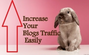 How to Increase Your New Blog/Site Traffic Easily - For Beginners