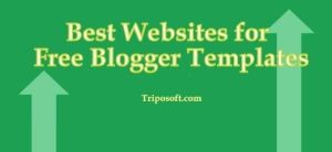 All of my friends are using Blogger as their Hosting for their sites. Blogger is one of the best platform for blogging.  Many of the successful bloggers started their blogging hobbies with a blogger then they moved to other platforms like WordPress, etc., So today I'm not going share some website who are providing Free Premium Blogger Templates.    Blogger is very easy to work than using WordPress. And in blogger it is very easy to customize your template than WordPress. Today I'm going to share some websites where you can download free premium blogger templates. I have listed some website who are providing free premium blogger template. So don't miss them ! Take a look on their site and their blog. Also Read this : 5 Superb Free Professional Blogger Templates of 2013 Best Websites for Providing Free Premium Blogger Templates BTemplates    This is the Best website for downloading Free Premium Blogger Themes with professional look. You can search your wanted blogger template for your wish 2 Column, 3 Column, Magazine, Gallery, etc., At this time here you'll find thousands of blogger templates. This is not an limit. It'll gets updated frequently with colorful template. My friends are using the template downloaded from BTemplate. Templateism    This is the best website for downloading Professional Blogger templates for blogger. This is an newly started site but it rocks well with high quality professional template. Here the template are totally free to use. Here the templates are so good and has professional look. I like this website. I'll recommend you to download your wanted template from Here. Soratemplates    Soratemplate is a another website for downloading Free Premium Blogger Themes with professional look. Here you can find high quality blogger templates.You can search your wanted blogger template for your wish 2 Column, 3 Column, Magazine, Gallery, etc., At this time here you'll find hundreds of blogger templates. This is not an limit. It'll gets updated frequently with colorful template. SeoBloggerTemplate    This website was started recently by the Lord-html. Here you can download Seo optimized templates. Here you can find responsive blogger templates with professional look. Take a look on it ! Zoom Template    This is the best website for downloading Professional Blogger templates for blogger. Zoom Template is one of my favorite places for free blogger templates. Here you can browse your own wanted templates for free. Here you'll find thousands of blogger templates.  There are many website who are providing a good template for your blog. But I'can't mention it all at this time. So I have listed them for your feature reference.  BestBloggerTemplates.Net MasTemplate.com Premium Blogger Templates Java Templates Deluxe Templates DHETemplate ThemeCraft All Blog Tools My Blogger Themes