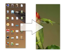 How To Clean Desktop Icons with One Click