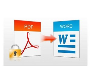 Learn to convert a PDF file into a Word file